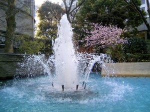 Fountain with cherry blossoms